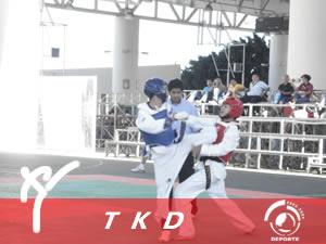 TKD 1